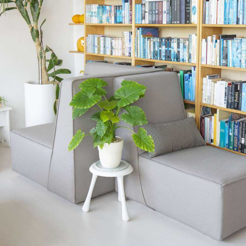 Cosy reading lounge: grey sofas with side table