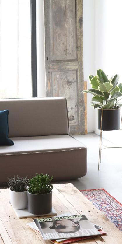 Schlichter Solist: graues Sofa im Wohnzimmer
